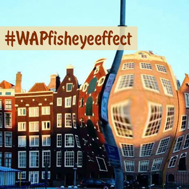 The fisheye photo effect weekend art project for Weekend art projects