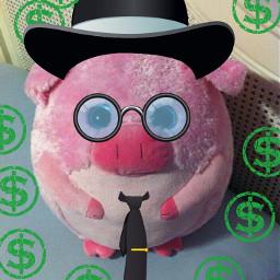 piggy pets & animals cute accountant