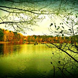 color brandenburg autumn photography