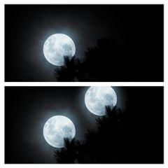 wapclonetool black & white nature photography moon