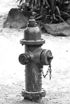 photography black & white vintage summer photostory